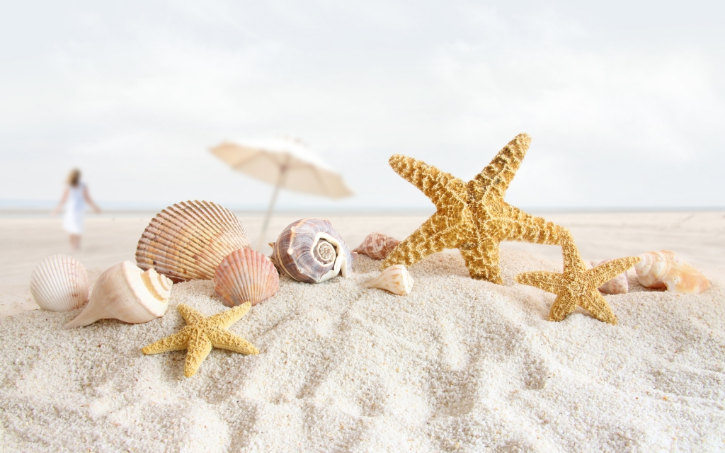 Starfish-Wallpaper-beach-sand-shells-shell[1]